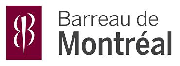 Me Michel P. Synnott, nouveau bâtonnier de Montréal – Pour un Barreau d'avant-garde!